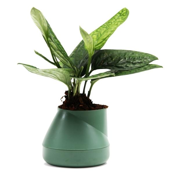Горшок цветочный hill pot, маленький, зеленый